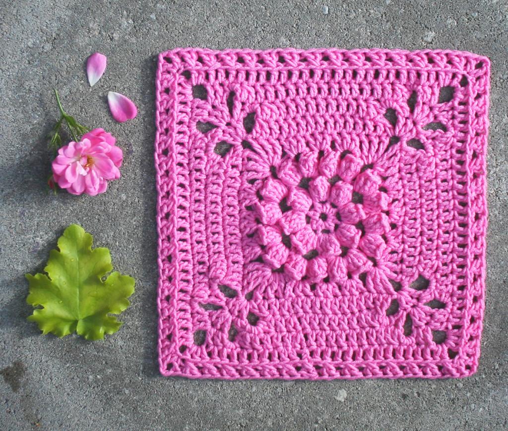 dahlia_garden_square_pink