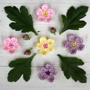 5_blommor_blad